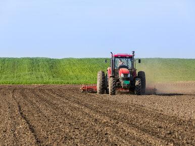 Opolskie: Rolnik zaorał ciężkim sprzętem średniowieczne ruiny
