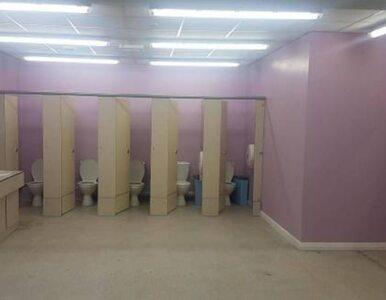 Katolicka szkoła usunęła ścianę w toalecie dla dziewcząt. Rodzice oburzeni