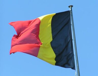 Belgia nie chce imigrantów? Trudniej dostać obywatelstwo