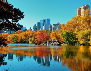 Świat przygotowuje się do drugiej fali, a w stanie Nowy Jork najmniej...