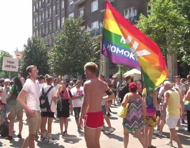 Parada równości w Budapeszcie. Stała się protestem przeciw ustawie o...