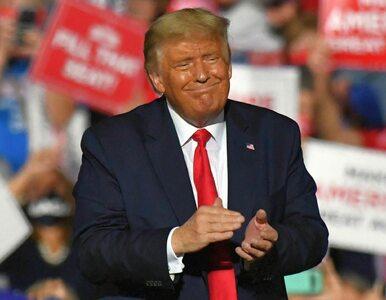 """maga2020!"". Holenderski ekspert włamał się na konto Trumpa? Dziennik ma..."