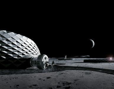 Domy na Księżycu zostaną wydrukowane. Dla NASA zaprojektowała je znana...