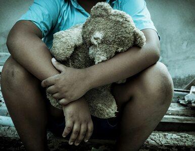 Rusza internetowy rejestr pedofilów. Jakie informacje się w nim znajdą?