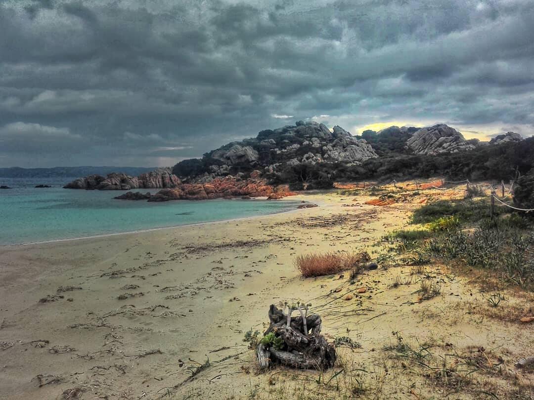 Wyspa Budelli w obiektywie Mauro Morandiego
