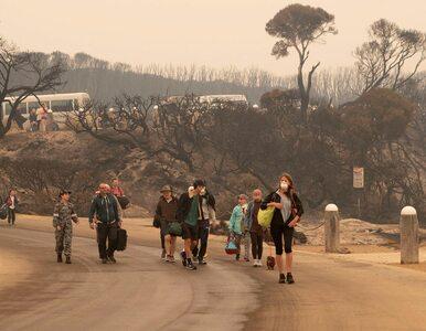 Klimatolog o pożarach w Australii: Teraz są groźniejsze i trudniej je...