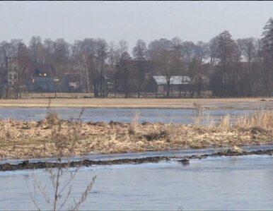 """Zalane łąki i pola na Lubelszczyźnie. """"60 lat nie było takiej wody"""""""