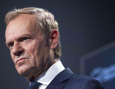 """Donald Tusk skomentował incydent w Szczecinie. """"Ta kobieta miała zadanie..."""