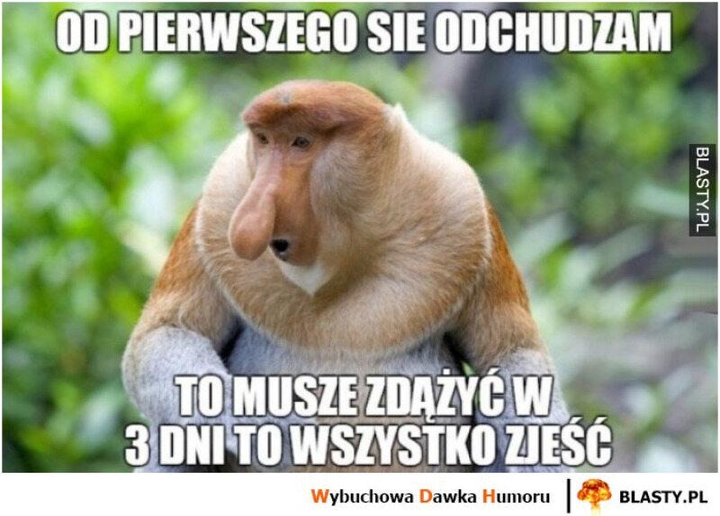 Mem na temat odchudzania