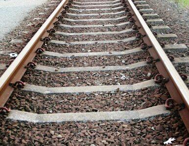 Mężczyzna zginął potrącony przez pociąg