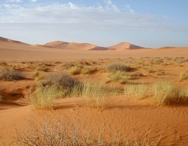 4-latek zgubił się na pustyni. Pomógł ONZ
