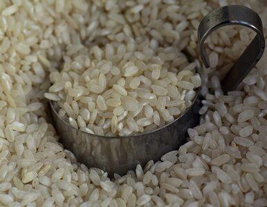 Ile kalorii ma ryż? Czy można jeść go na diecie?