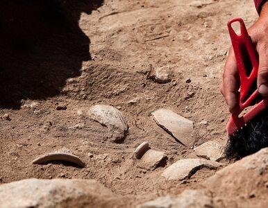 Rolnik przypadkiem natrafił na trzy groby sprzed 4 tys. lat. Teraz...