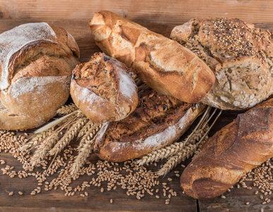 Żywieniowy postrach i wróg zdrowia? Poznaj gluten – i przestań wierzyć w...