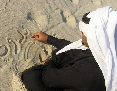 """Beduini nie chcą judaizacji ani """"spełnienia wizji syjonistycznej"""""""