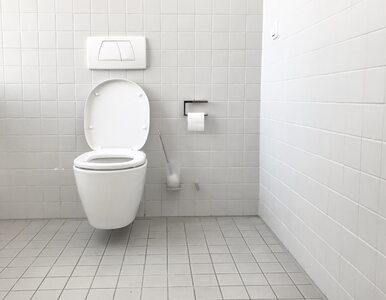 Światowy Dzień Toalet: Niemal milion Polaków nie ma w domu toalety