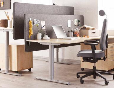 5 zasad efektywnej pracy z domu