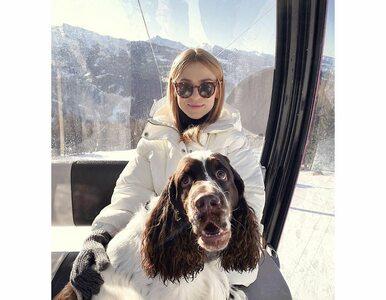 Kasia Tusk bierze udział w WOŚP. Można wylicytować spacer z jej psem
