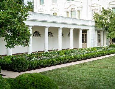 """""""Wygląda jak cmentarz"""". Amerykanie wściekli, symbol Białego Domu..."""