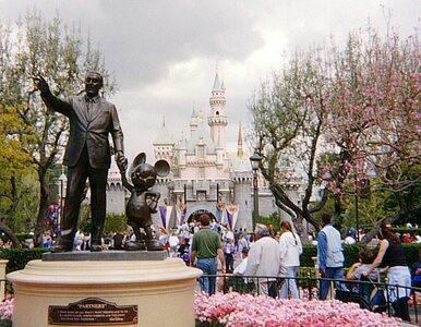 Bizon biegał po Disneylandzie. Tratował ogrodzenia i bariery