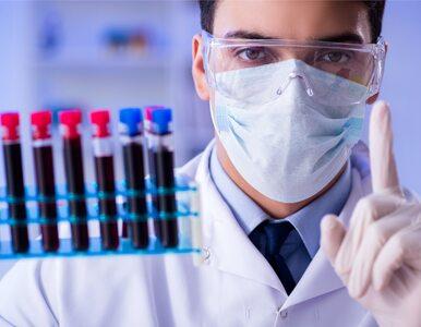 Test krwi wykryje 50 rodzajów nowotworów? Rozpoczęto największe badania...
