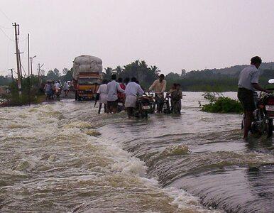 Ekolog ostrzega: ludzie sprowadzą na siebie kolejne zabójcze powodzie