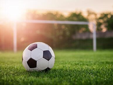 Nieproszeni goście na meczu piłki nożnej. Nagranie z Bułgarii obiegło świat