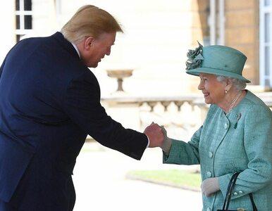 Donald Trump z wizytą w Wielkiej Brytanii. Powitano go... olbrzymim...