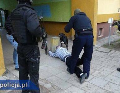 Wysadzali bankomaty. Pomogły wystrzały niemieckich policjantów