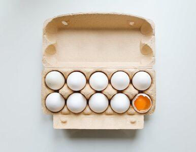 Czy wegetarianie powinni jeść jajka? Odpowiedź może zaskoczyć