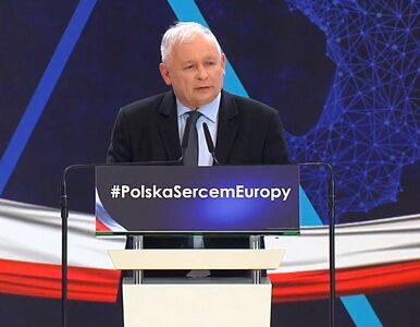 Olczyk: PiS dzieli Polaków i judzi na osoby LGBT, a listy Koalicji...