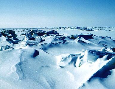 Arktyka interesuje nas głównie naukowo