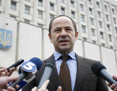 Tihipko będzie wicepremierem gospodarki Ukrainy