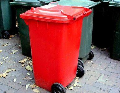 6 tysięcy skarg ws. odbioru śmieci