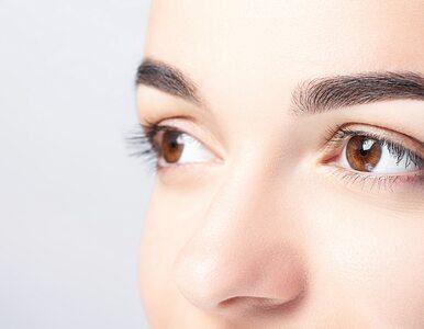 Henna pudrowa brwi hitem kosmetycznym. Czym się różni od zwykłej henny?