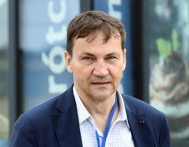 Sikorski do Olejnik: Już widzę, jak pani redaktor będzie musiała w...