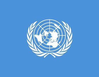 Żołnierze sił pokojowych ONZ pojmani przez rebeliantów