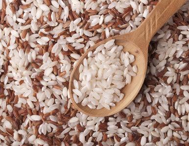 Odkryto sposób na zmniejszanie wchłaniania kalorii z ryżu