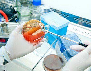 Prof. Drąg: Moje badania są już wykorzystywane m.in. do opracowania...