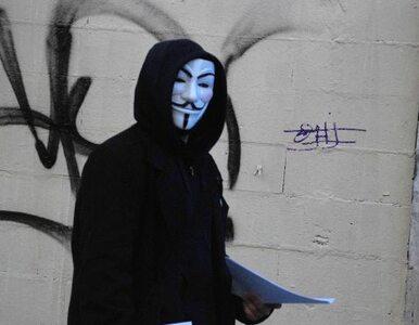 """""""W umowie CETA skopiowano zapisy ACTA. To zła droga"""""""