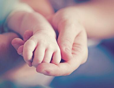 """Koronawirus we Włoszech. """"Pacjent numer jeden"""" właśnie został ojcem"""