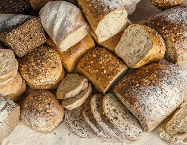 Jaka jest różnica między pieczywem pełnoziarnistym a razowym?
