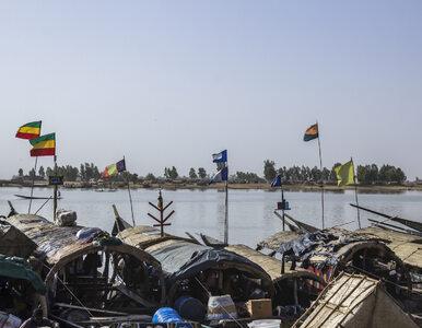 ONZ apeluje do rządu Mali. Żołnierze dokonali egzekucji na 12 cywilach