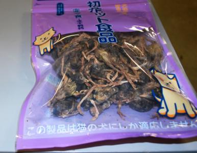 Podróżny z Chin wiózł w torebce zasuszone martwe ptaki. Te zdjęcia mogą...