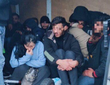 Straż Graniczna zatrzymała auto firmy kurierskiej. W środku 27 migrantów