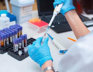 Wirus SARS-CoV-2 jest dużo bardziej stabilny niż wirus grypy. Co to...