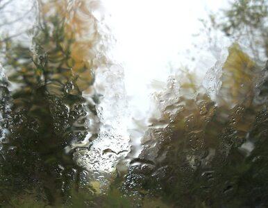 Poniedziałek pochmurny i deszczowy. Temperatura sięgnie 18℃