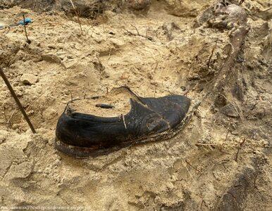 W lesie pod Warszawą odnaleziono masowy grób. W nim szczątki ponad 25 osób