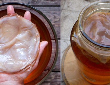 Jak zrobić fermentowaną herbatę kombucha? Prosty przepis na zdrowy napój