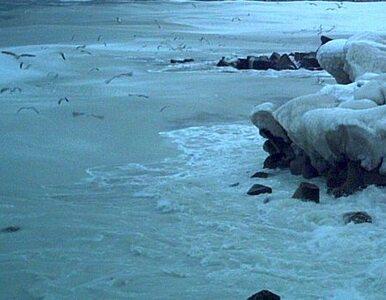 Globalne ocieplenie miało rozmrozić Arktykę. Lodu znacznie przybyło